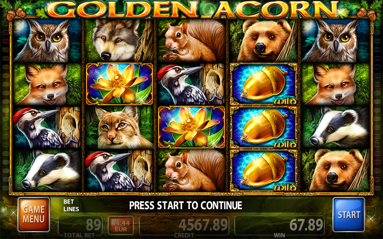 Golden Acorn Video Slot Game - Main Screen