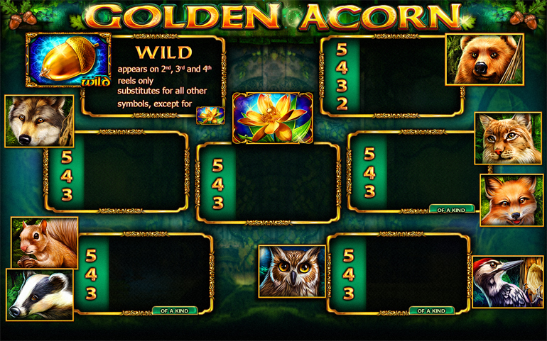 Golden Acorn Video Slot Game - Paytable